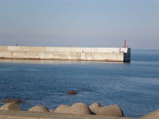 2008-12-2.jpg
