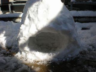 2009-01-26-1.jpg